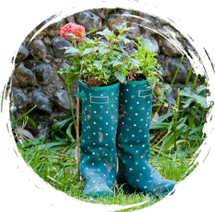 Welly boots with plants inside